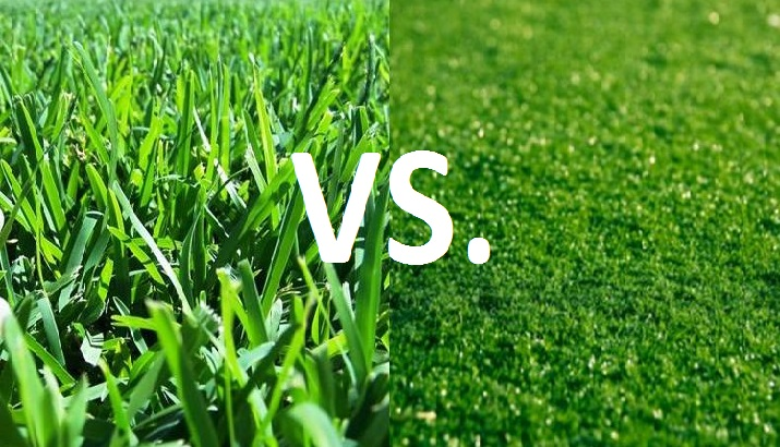Grass vs Turf: Which is Safer? | SiOWfa16: Science in Our